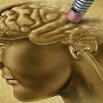 آنچه در مورد آلزایمر باید بدانیم ….