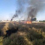آتشسوزی علفزارها،تهدیدی برای محیط زیست