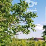 فروش باغ در شهریار