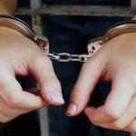 """اجرای طرح """"اقتدار یک"""" و دستگیری ۵۳۵ نفر اراذل و اوباش درغرب استان تهران"""