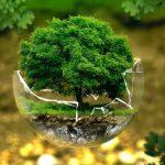 چگونه سفر کنیم که قاتل محیطزیست نباشیم