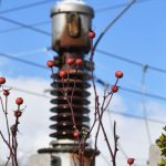 صنعت برق بیرمق ایران ؛ افزایش واردات برق