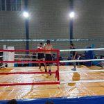 افتتاحیه مسابقات کشوری کیک بوکس و موی تای در سالن ورزشی شهدای کردزار